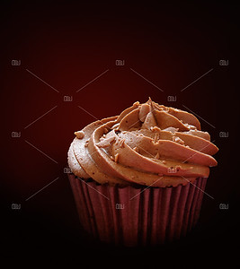 Chocolate cupcake isolated