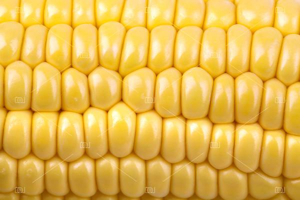 Corn on the cob2