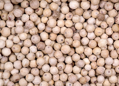 White peppercorn background