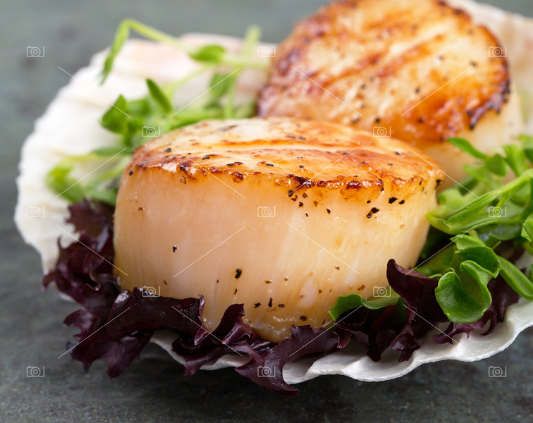 Sear scallops on lettuce