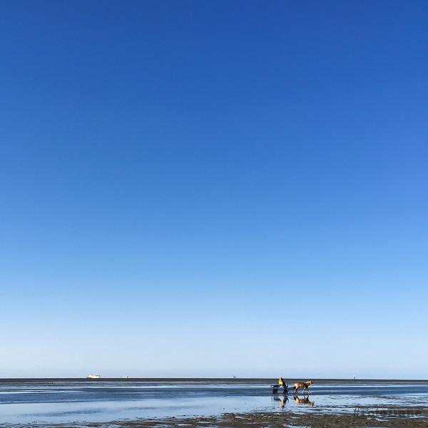 Endless Shore