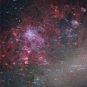 Tarantula Nebula (NGC2070) with labels