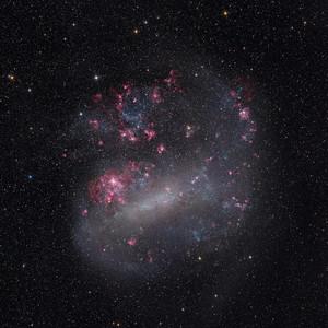 The Large Magellanic Cloud