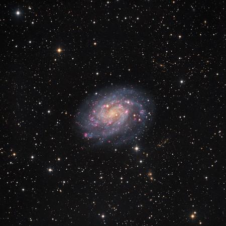 Spiral Galaxy NGC 300