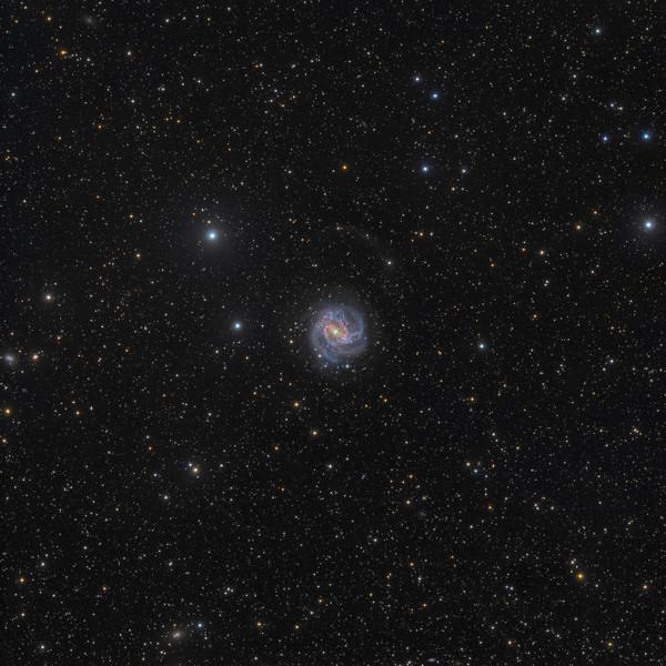 Tidal Streams on M83