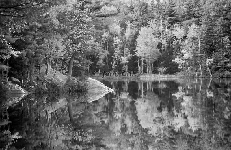 Saltmarsh Pond 4924