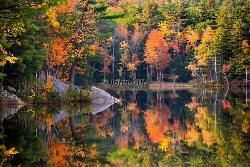 Saltmarsh Pond Reflection