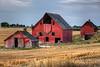 Idaho Barns