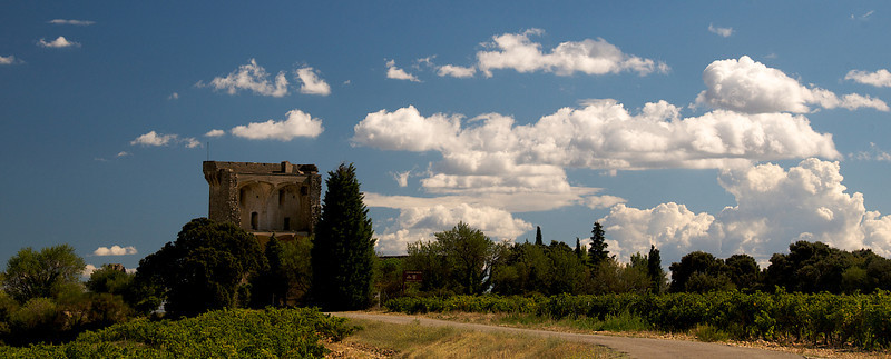 Castle remains in vineyards atop Châteauneuf-du-Pape