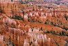 Bryce Canyon Patterns