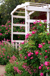 Garden Gate Monterey, California