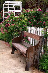 Garden Bench at Cooper Molera Adobe Monterey, California