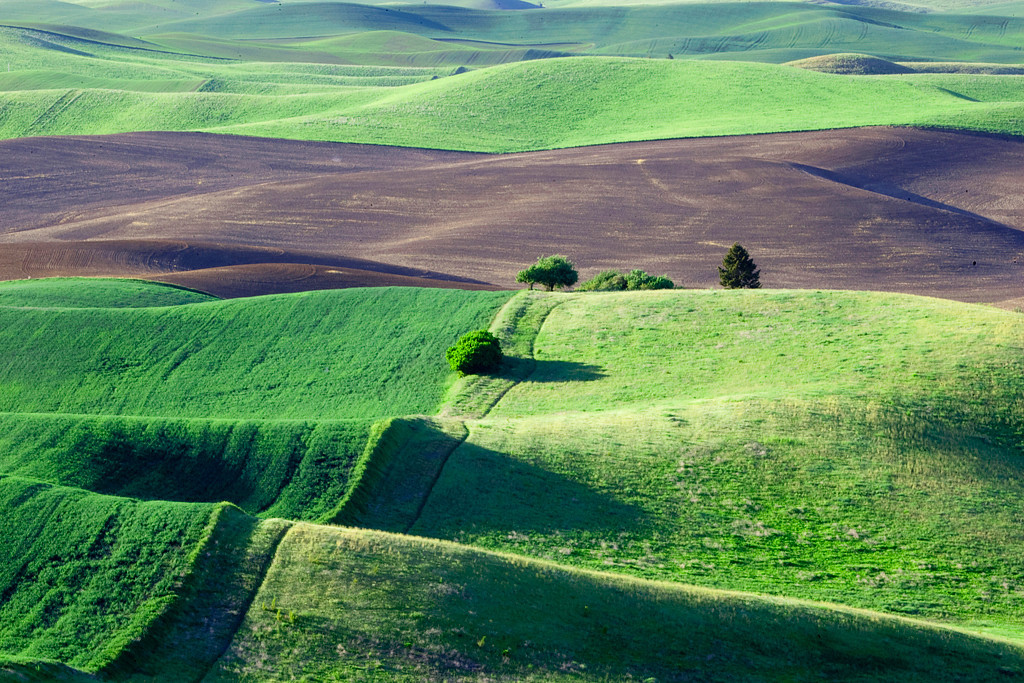 Also shot from the top of Steptoe Butte.