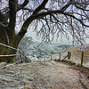 Hoar Frost, South Downs, Hampshire