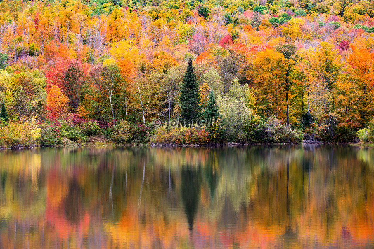 autumn reflection, white mts. nh