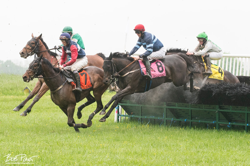 The Willowdale Steeplechase 2018