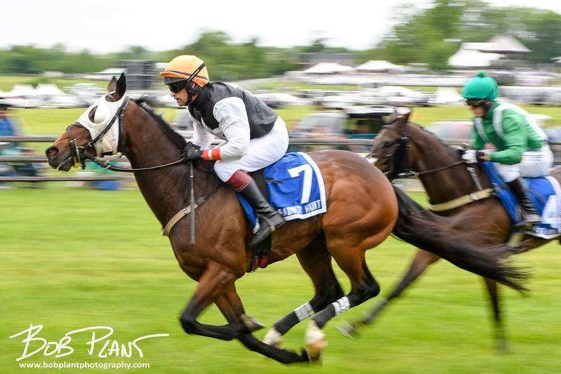 2017 Radnor Hunt Races