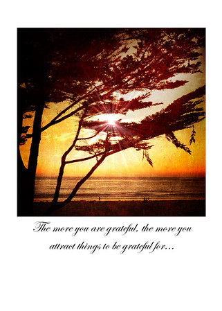 The more you are grateful, the more you attract things to be grateful for...
