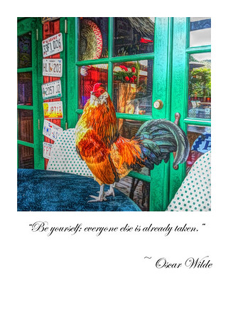 """Be yourself; everyone else is already taken."" ~ Oscar Wilde"