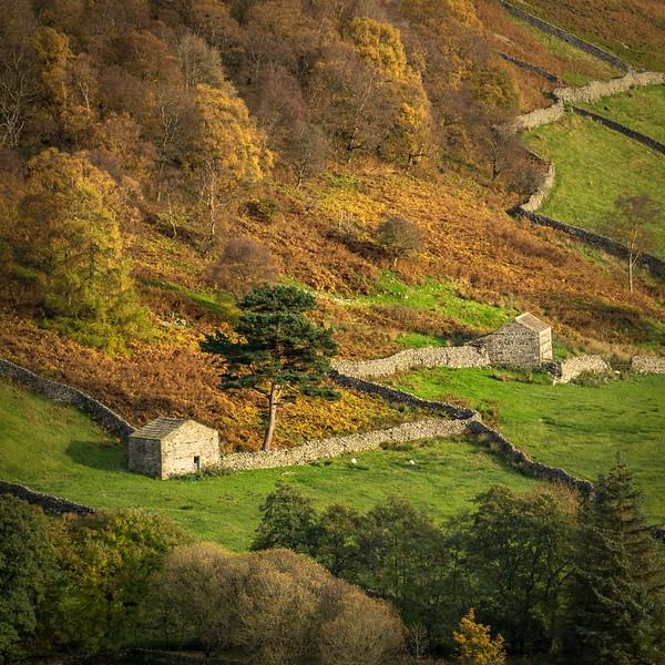 Thwaite Barns