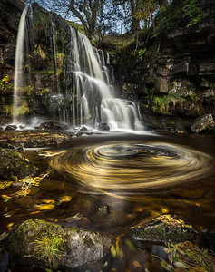 Autumn, East Gill Force
