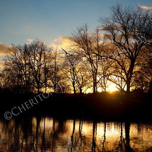 Afternoon Winter Sun Silhouette Landscape