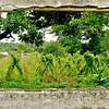 Makeni Window