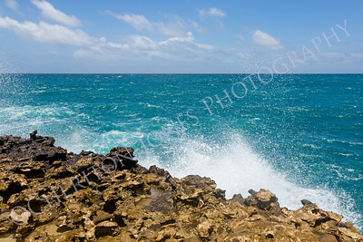 Limestone Coastline and Ocean Horizon Background