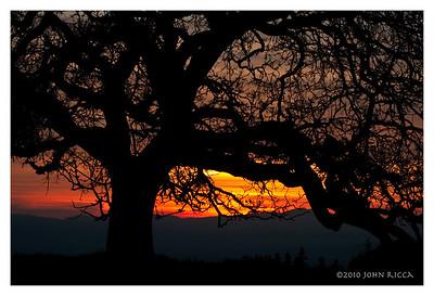 Briones Sunrise 2