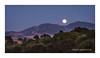Moonrise Over Mt  Diablo