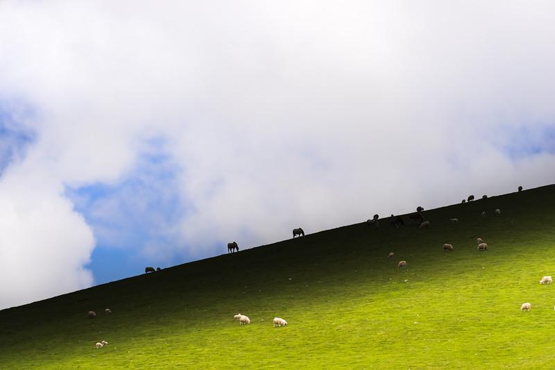 Frenni Fawr Skyline 1