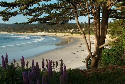 Carmel Beach Afternoon