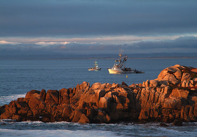 Fishing Boats on Monterey Bay