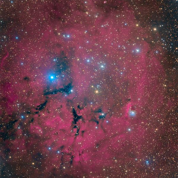 GUM14 / RCW27 Nebula