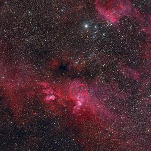 The Statue of Liberty Nebula (NGC 3576)
