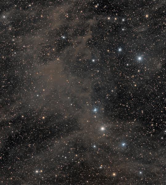 Octans dust and molecular cloud