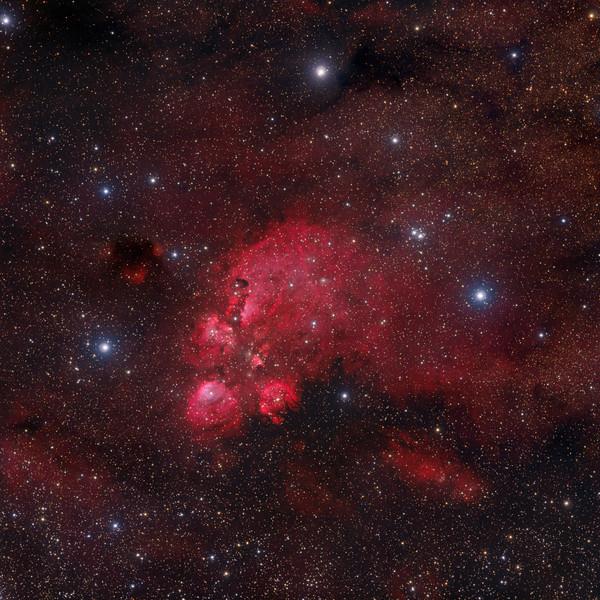 The Cat's Paw Nebula  NGC 6334