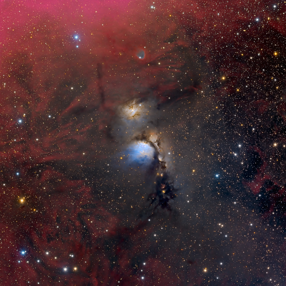 M78 and Reflecting Dust Clouds in Orion