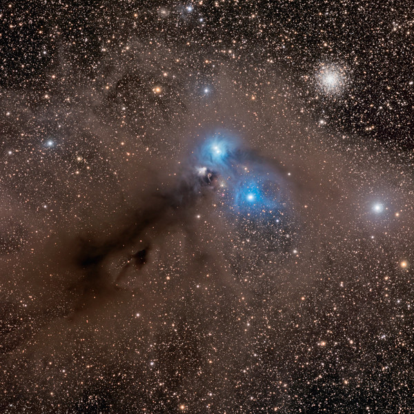 Stars and Dust Across Corona Australis