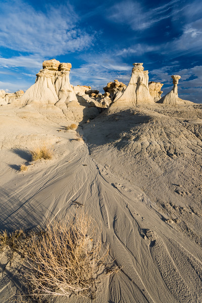 Taken in the badlands of San Juan County, New Mexico.
