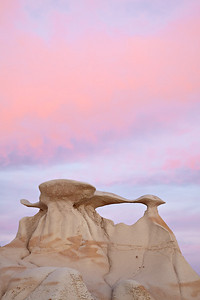 """Winging It""  This is just one of the collection of formations known as ""The Wings."" Taken at sunset in the Bisti/De-Na-Zin Wilderness Area of New Mexico, USA."