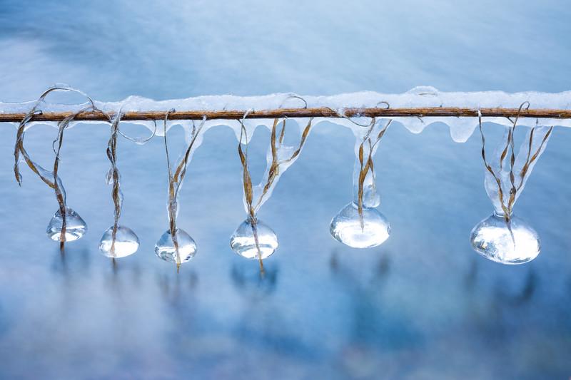 """""""Winter's Jewels"""""""