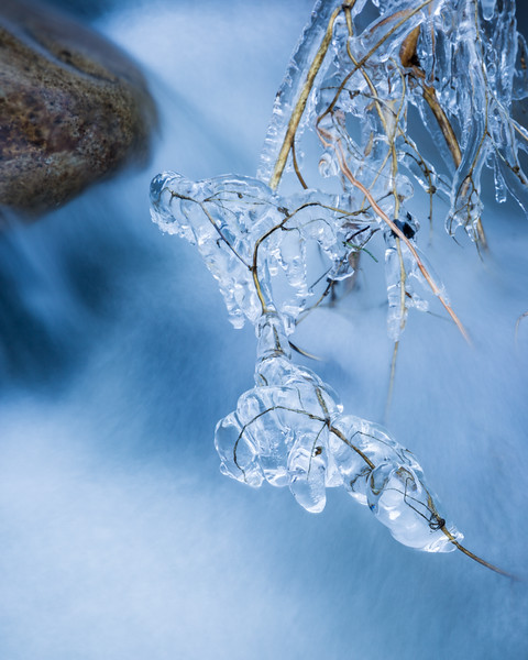 Ice formations on a small creek on a cold winter day. Taken in the Gila National Forest, New Mexico, USA.
