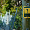 Waikoau River swing bridge, Humpridge Trek, Tuatapere, New Zealand