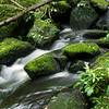 Matai Falls, The Catlins, New Zealand