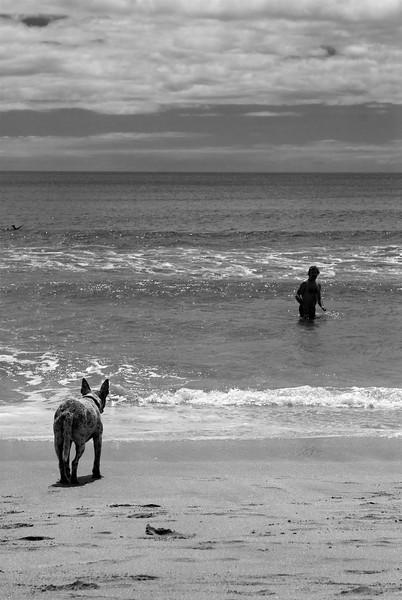Hot Water Beach near Hahei, New Zealand