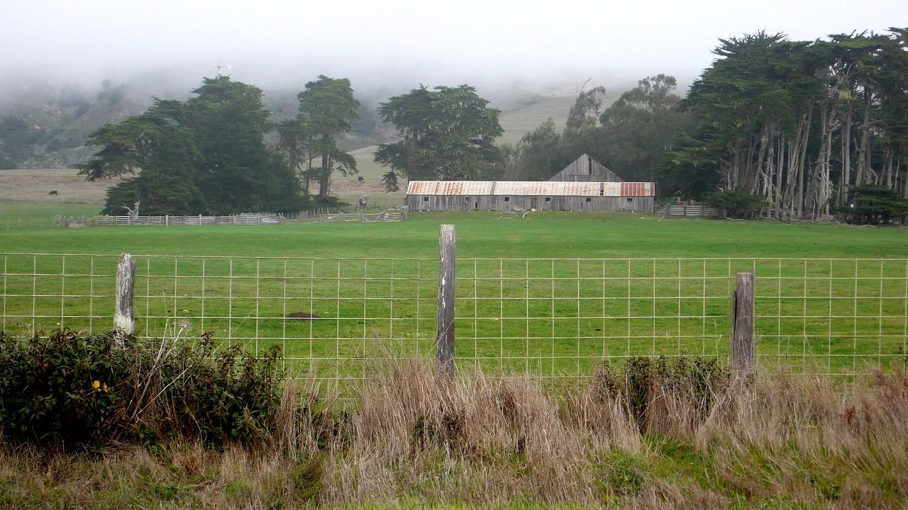 Farm in the Mist Sonoma Coast near Bodega, California