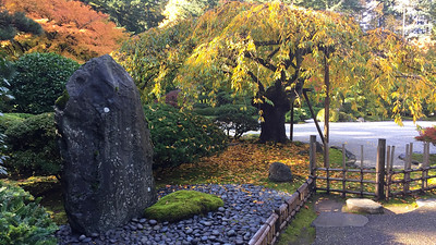 Autumn Color at the Portland Japanese Garden