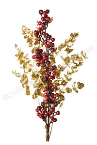 Sparkly Red Berries on Golden Leaves Isolated Background