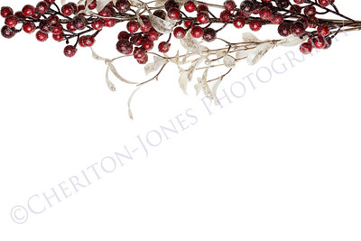 Sparkly Red Berries and Silver Glitter Pearl Leaves Border